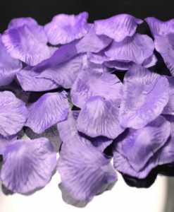 Set-Rose-Petals2