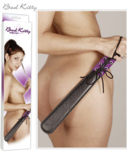 Paleta-Purple-Bad-Kitty.-jpg