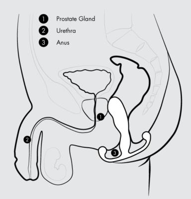 Masator Prostata Progasm Ice Aneros